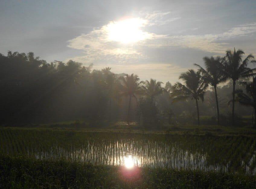 Ucapan Selamat Pagi untuk Saudara Islami