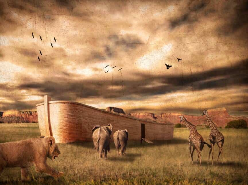 Kisah Pembangunan dan Mukjizat Bahtera Nabi Nuh Alaihissalam